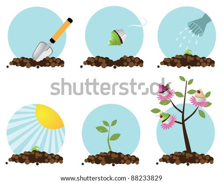 How to grow a cupcake tree Step by step. EPS 8 vector, grouped for easy editing. - stock vector
