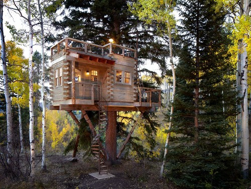 Colorado Treehouse