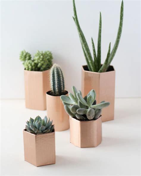 Pot Pour Plante. pot pour plantes aromatiques orchidee