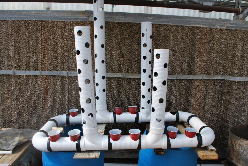 Vertical PVC Pipe Aquaponics System