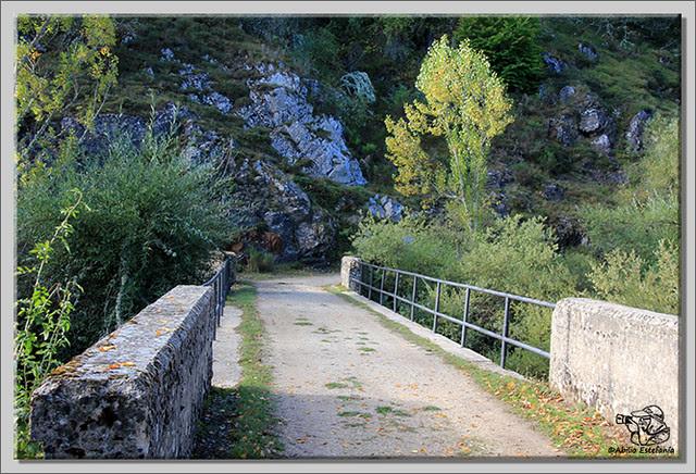 Roblón de Estalaya (Palencia) (3)
