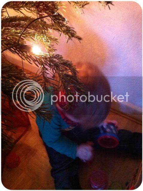 Weihnachtsbaum-Zwuggel