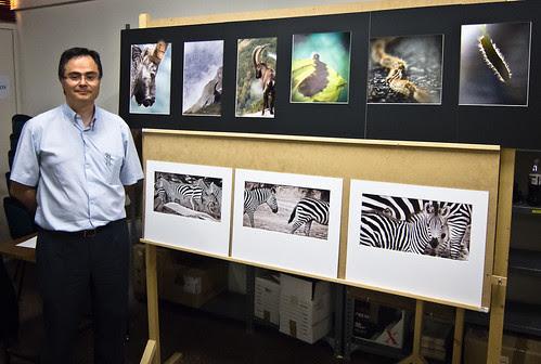 181/365 3er premio en el concurso Memorial Luis Solano Montesinos por Juan R. Velasco