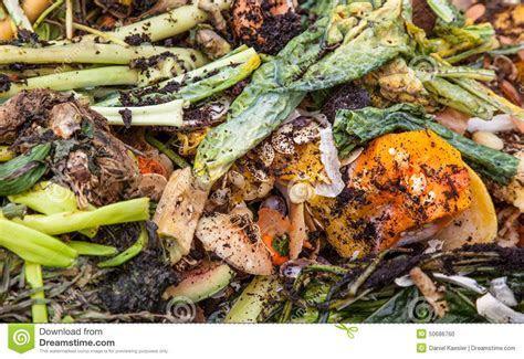 Organic Waste Stock Photo   Image: 50686760