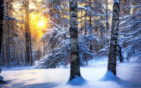tapety na pulpit zimalas snieg mroz fajne tlo