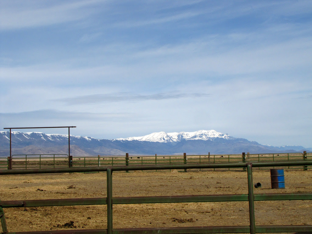 Steens Mountain Over the Fence