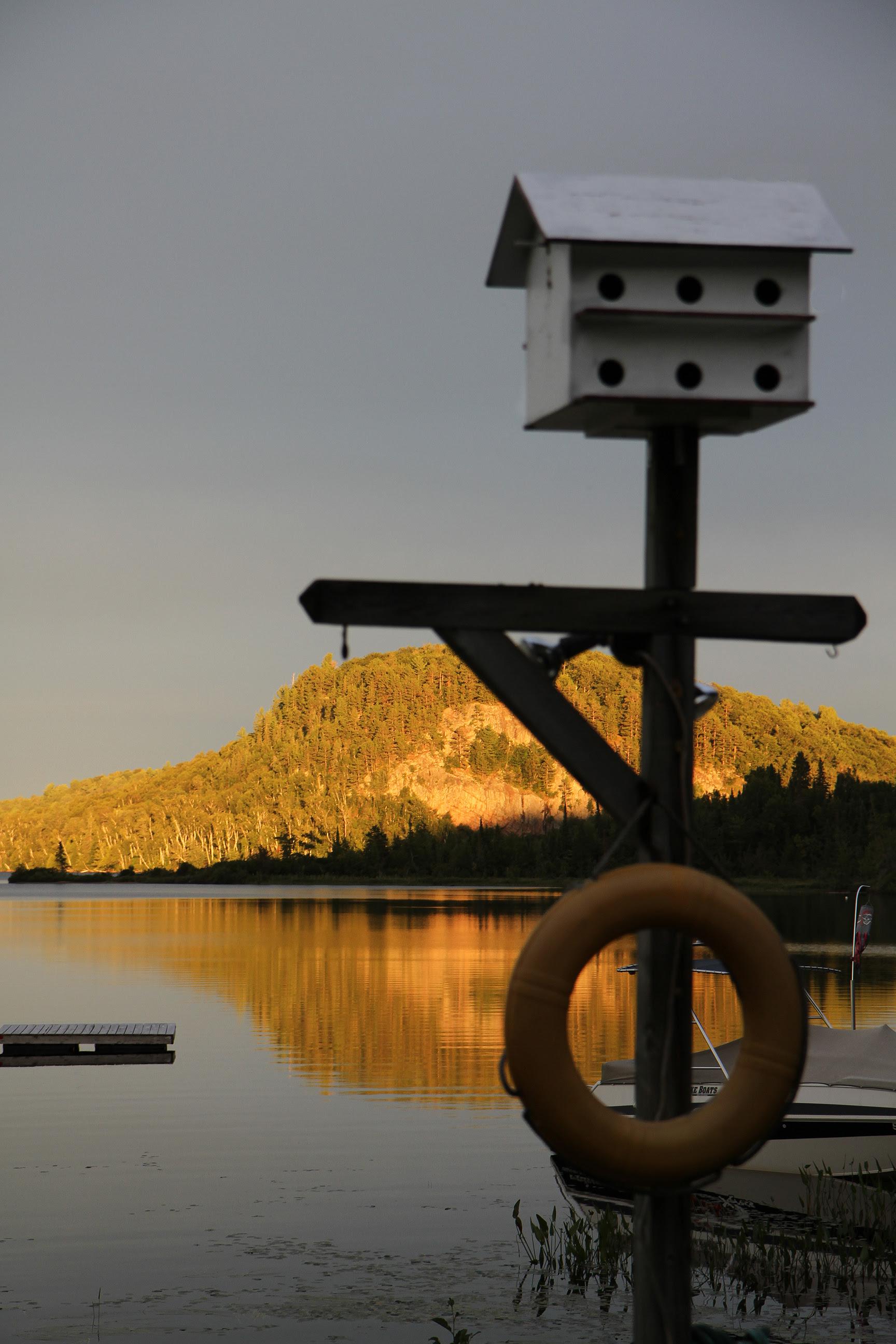 golden hour blueberry island2