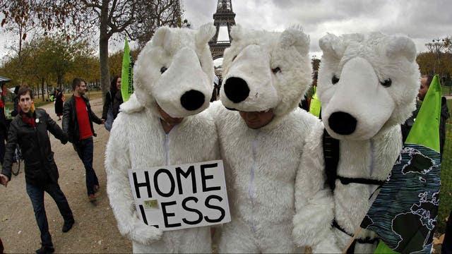 Los osos polares se unieron a la marcha