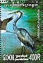 Great-billed Heron Ardea sumatrana