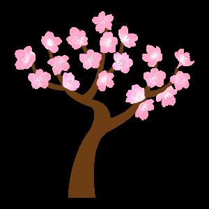桜の木のセット14 花植物イラスト Flode Illustration フロデ