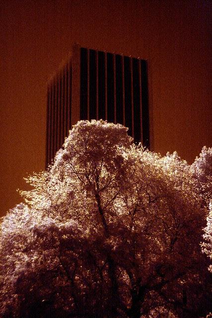 wells fargo tower, infrared