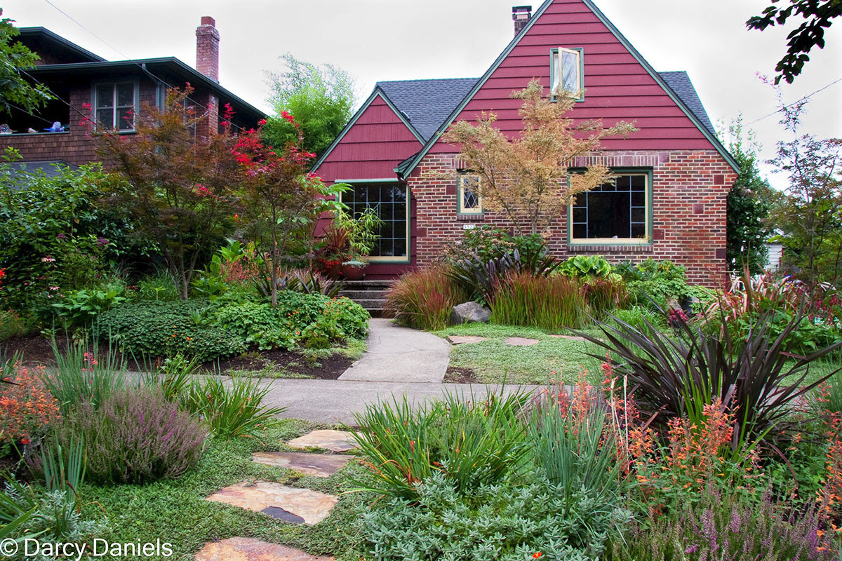 Perennial Garden With Japanese Maple Creative Landscapes Inc