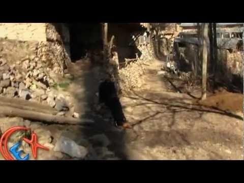 Sorkun Kasabası Heseli Mahallesi Video 24.03.2012 Cumartesi