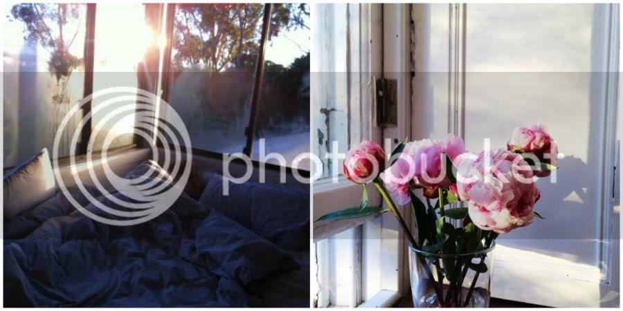 photo collage1_zpsq0d7ny5f.jpg