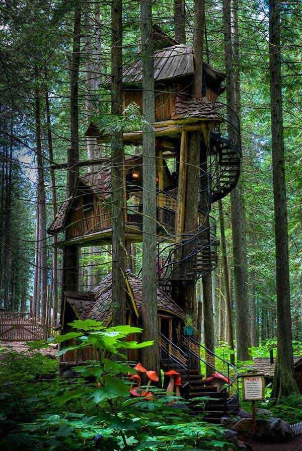 amazing-treehouses-1