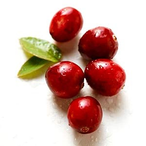 http://www.pacifichealth.info/images/cranberries.jpg