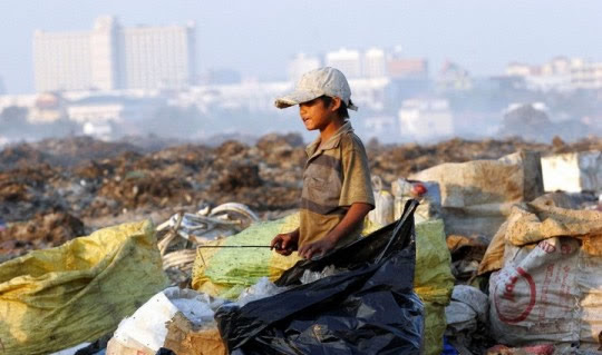 Ζωή σε σκουπιδότοπο