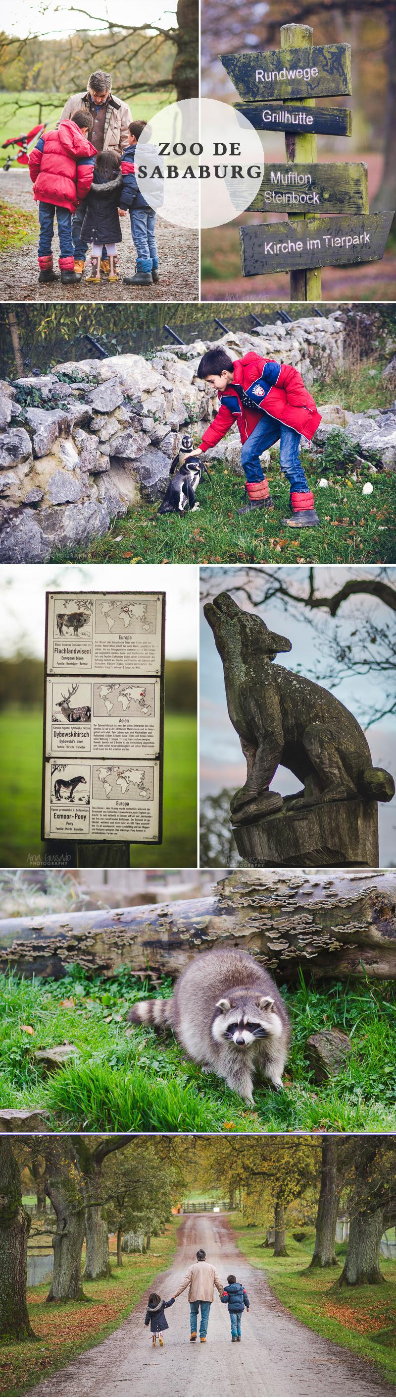 Zoo-Sababurg