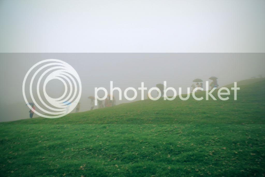 photo IMG_1754-2_zpsac10904f.jpg