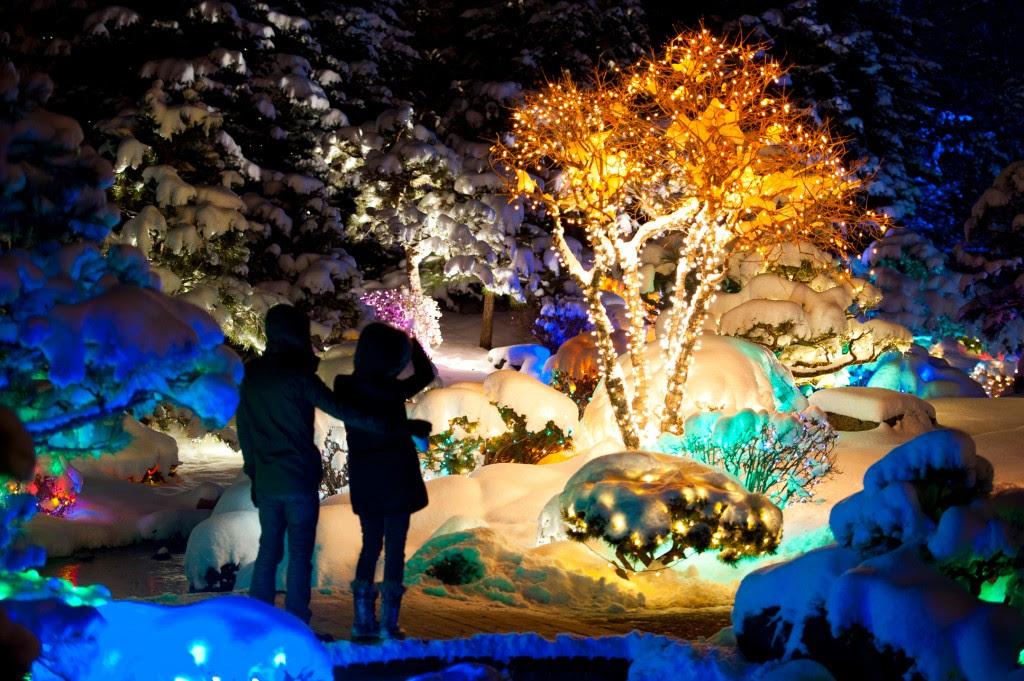 Christmas Lights In Wichita Ks.Botanical Gardens Christmas Lights Wichita Ks Home Inspiration