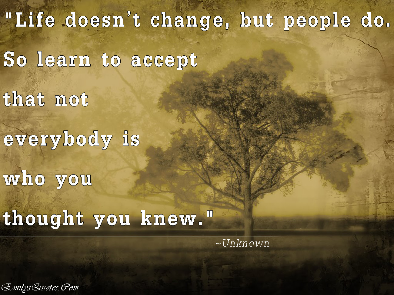 Life Doesnt Change But People Do So Learn To Accept That Not