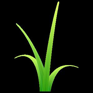 草 花植物イラスト Flode Illustration フロデイラスト