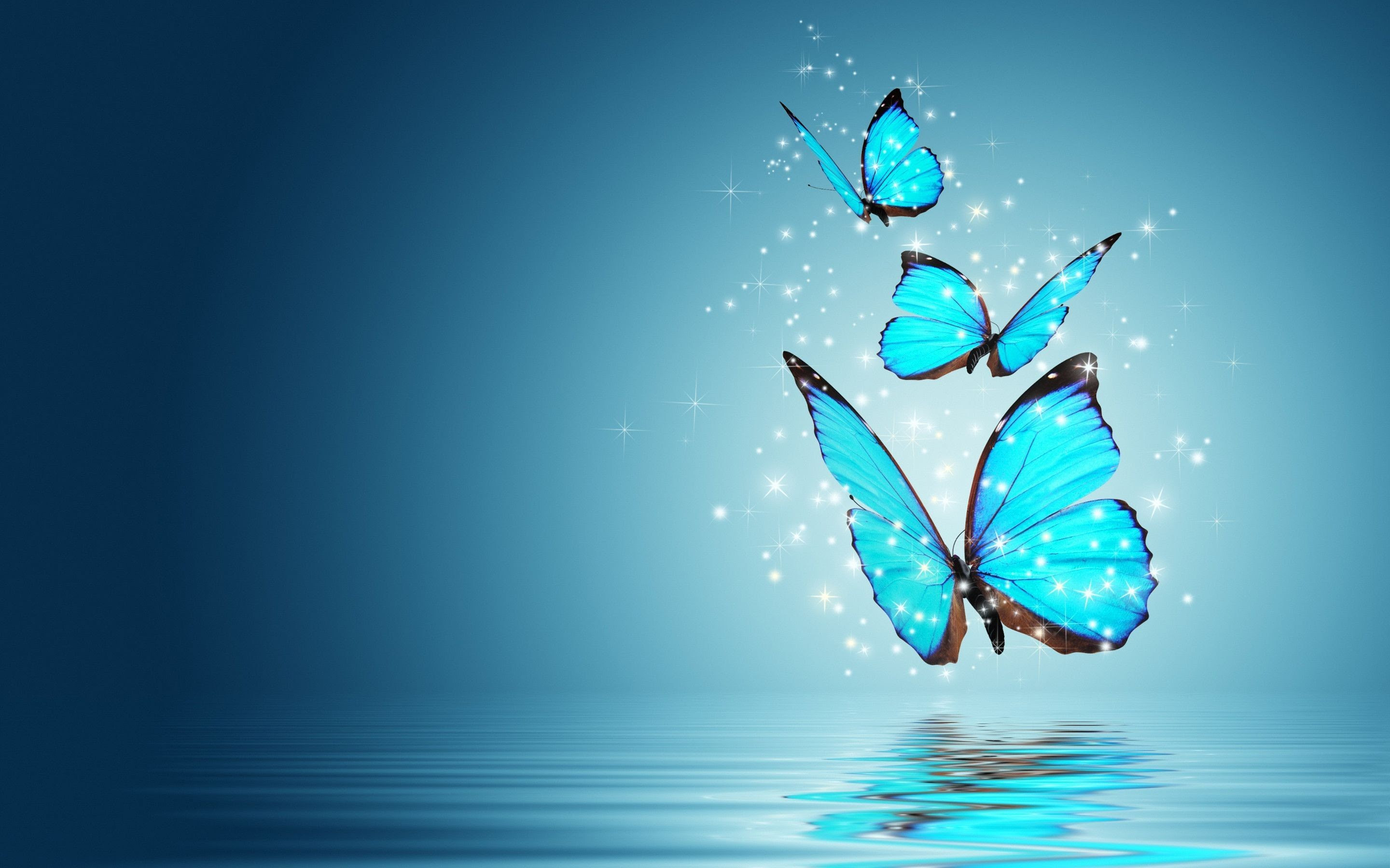 Blue Butterfly HD Wallpaper (70+ images)