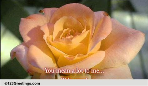 You Mean A Lot To Me! Free For Someone You Care eCards