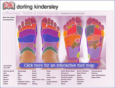 http://www.reflexology-research.com/Images/dk_reflexology_foot_l.jpg