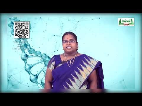 11th Bio Chemistry உயிர் மூலக்கூறுகள் அலகு 2 Kalvi TV