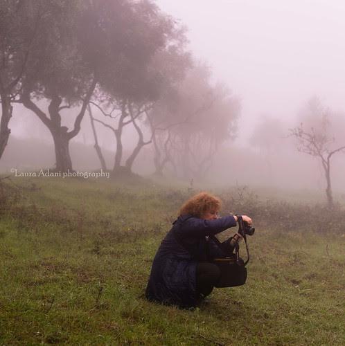 laudemio blogtour-3149