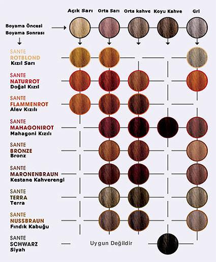 Sante Organik Bitkisel Toz Saç Boyası Fındık Kabuğu 100gr Ekoorganik