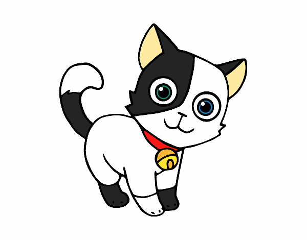 Dibujo De Gato Doméstico Pintado Por Darling1d En Dibujosnet El Día