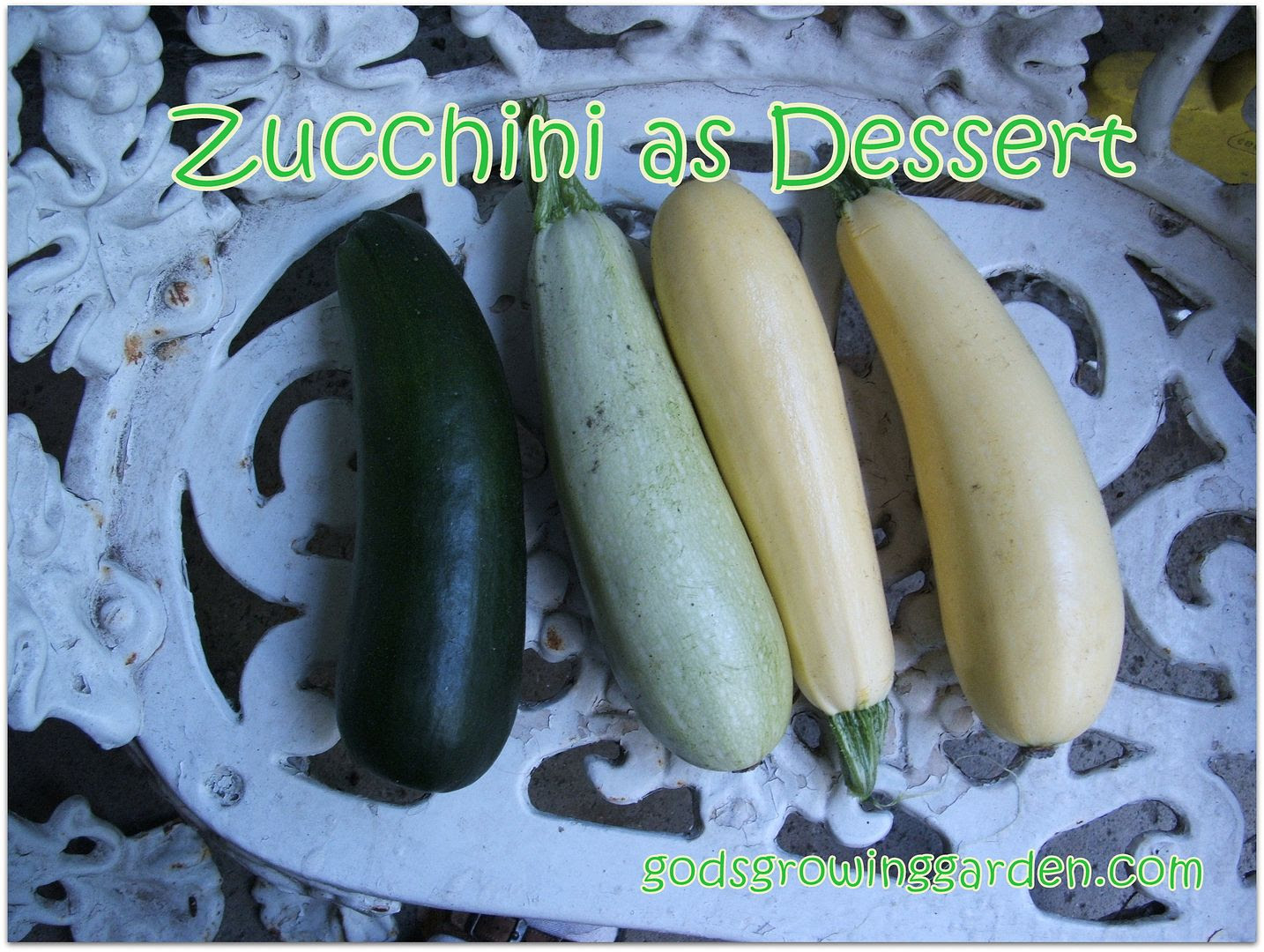 Zucchini by Angie Ouellette-Tower for godsgrowinggarden.com photo 001_zps90e32ca0.jpg