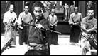 picture: Samurai Cinema 101