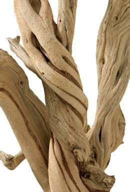 Sandblasted Ghostwood Branches 12in (California Driftwood