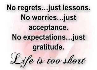 No Pain No Gain No Worries Quotes Quotations Sayings 2019
