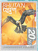 Bearded VultureGypaetus barbatus