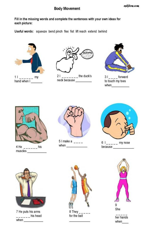 Body movement exercise vocabulary expressions element7 606x1024