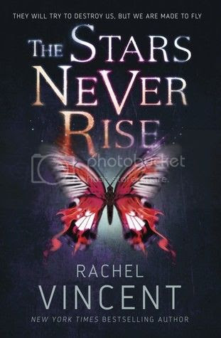 https://www.goodreads.com/book/show/17788681-the-stars-never-rise