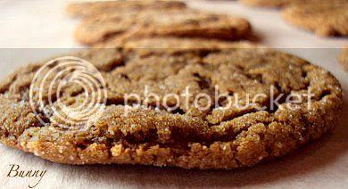 molasses cookie