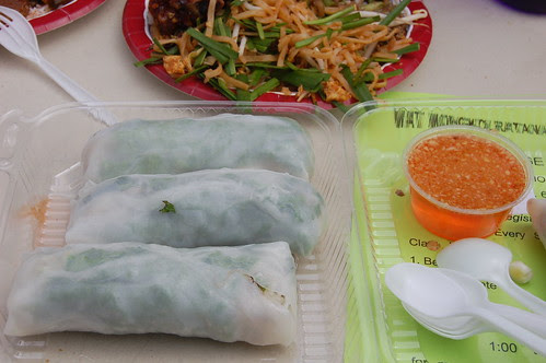 Fresh Vegetable Spring Rolls