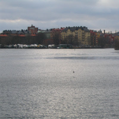 View across the river