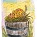 wineflowerbarrel