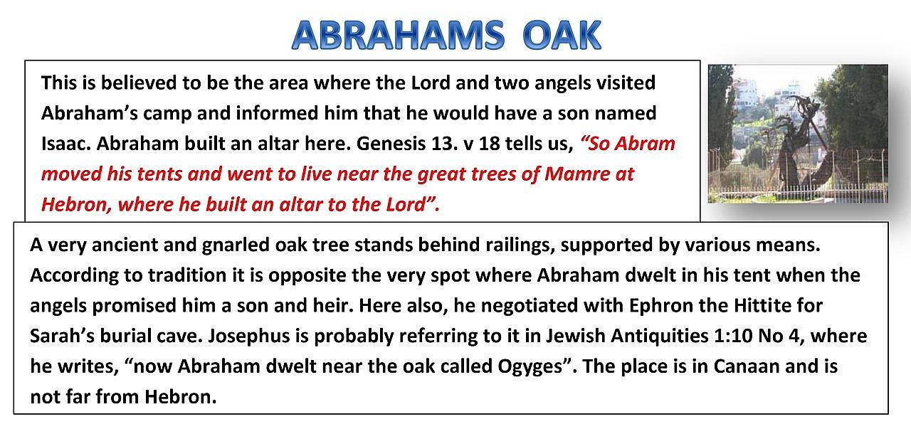 ABRAHAMS OAK Genesis 13:18.