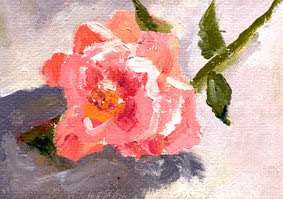 one hour rose