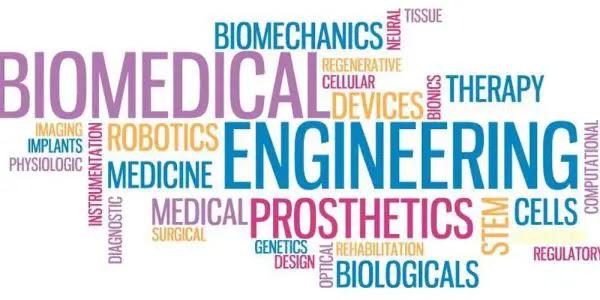 What Is Biomedical Engineering - Jobs, Salary Top School & Companies