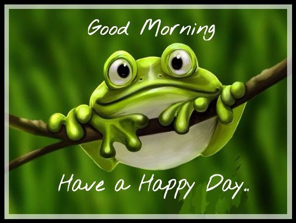 Good Morning And Have A Happy Day Pictures Photos And Images For