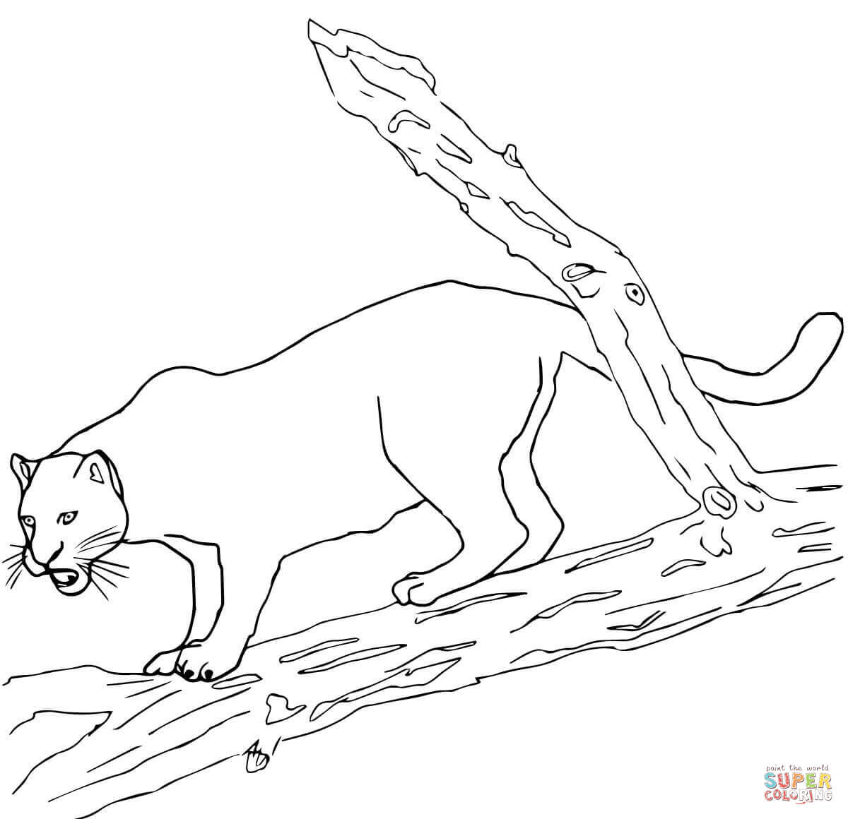 97 Top Coloring Pages Jaguar  Images