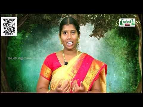 11th Tamil கல்வி துணைப்பாடம் இதழாளர் பாரதி இயல் 4 பகுதி 6 TM Kalvi TV